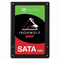 Seagate IRONWOLF NAS SSD 3.84TB (ZA3840NM10011)
